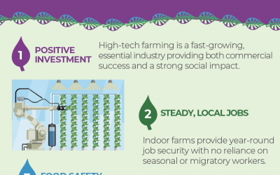 15 Benefits of Indoor Vertical Farming