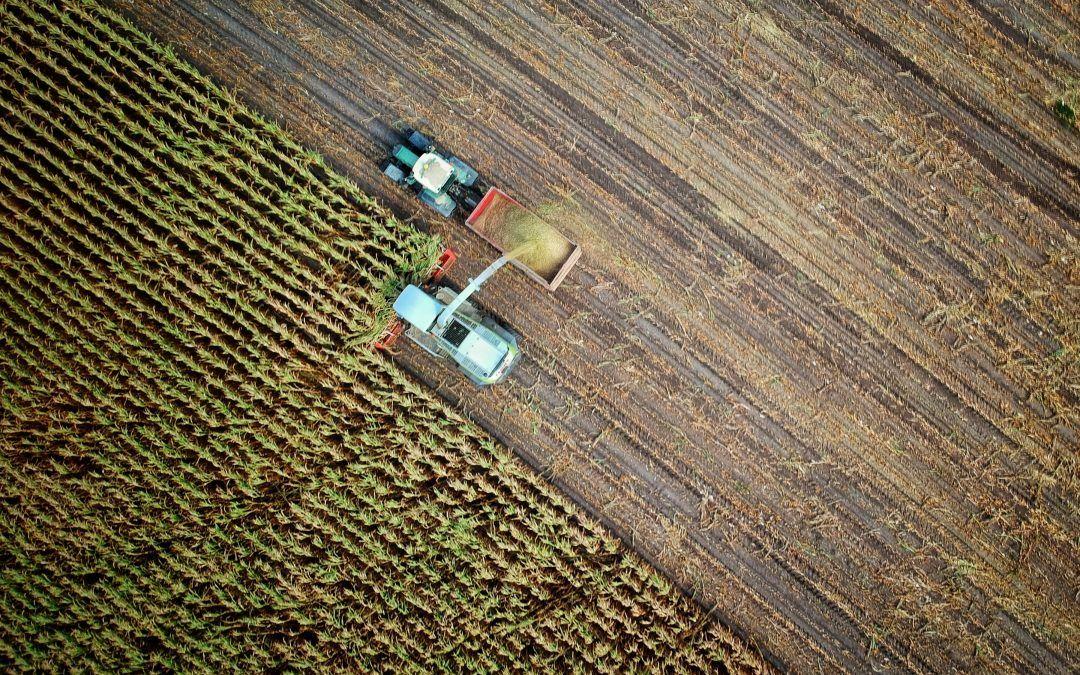 How indoor vertical farming can help the EU carbon farming initiative